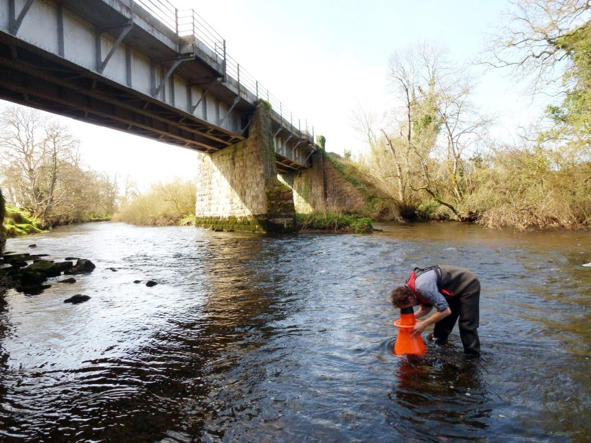 Hand searching survey using a Bathyscope on the River Liffey